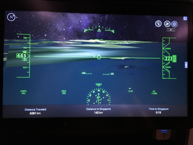 "The ""cockpit"" view in the IFE flight map"